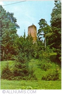 Image #1 of Curtea de Argeș  - Nicoară Tower