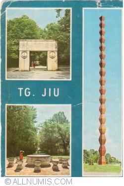 Image #1 of Tg. Jiu (1973)