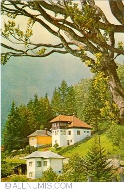 Image #1 of Bușteni