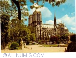 Imaginea #1 a Paris - Catedrala Notre-Dame și Scuarul Viviani (Cathédrale Notre-Dame de Paris et Le square René-Viviani - Montebello)