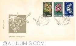 Image #2 of Ocrotirea naturii - Flori
