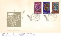 Image #1 of Ocrotirea naturii - Flori