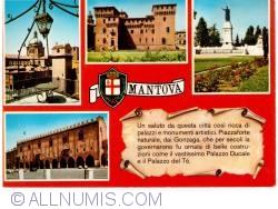 Imaginea #1 a Mantova