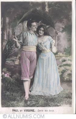Imaginea #1 a Paul și Virginia - În pădure (Paul et Virginie - Dans les bois)
