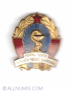 Medical workers merit badge