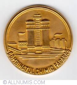 Image #2 of 50 years of chemical industry in Făgăraş
