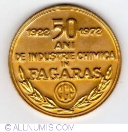 Image #1 of 50 years of chemical industry in Făgăraş