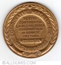 Image #2 of Combinatul Metalurgic Tulcea - 10 ani