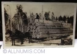Image #1 of Logging sled Lewiston Michigan