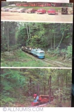 Image #1 of Silver Lake Express train Ride, St. Ignace Mich