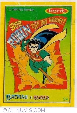 24 - Batman&Robin
