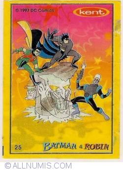 25 - Batman&Robin
