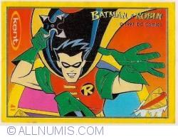 41 - Batman&Robin