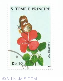 10 Dobras - White and brown spoitted butterflie