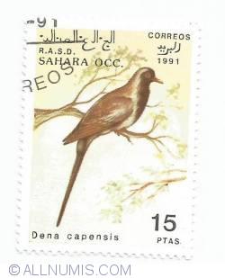 15 pesetas - Dena capensis