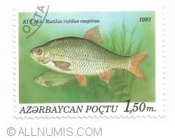 Image #1 of 1.50 manat - Rutilus rutilus caspicus