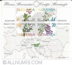 Image #1 of 183 tolari- Flora