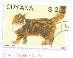 Image #1 of 2 Dollars - Maine coon