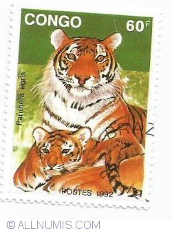 Image #1 of 60 franc CFA - Panthera tigris