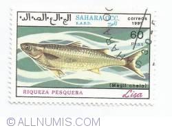 60 pesetas - Magif chelo