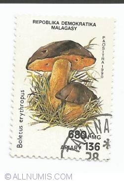 Image #1 of 680 Francs-  Boletus erythropus