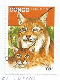 Image #1 of 75 franc CFA - Lynx lynx
