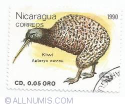 Image #1 of 0 05 Cordoba - Apteryx Owenii