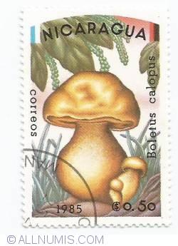 Image #1 of 0,50 Cordobas - Boletus calopus