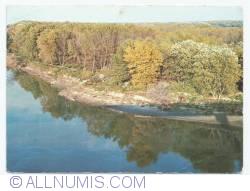 Image #1 of Giurgiu - Bratul Ara