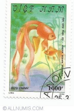 Image #1 of 1000 Dong - Carassius auratus auratus