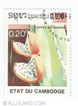Imaginea #1 a 0,20 Riels - Cereus Hexagonus
