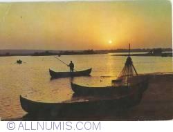 Image #1 of Danube Delta - In the twilight