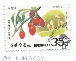 Imaginea #1 a 35 Chon - Lycum chinense si Agaricus arvensis