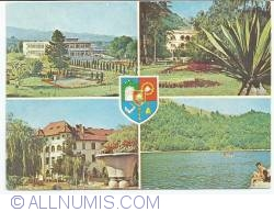Caraş-Severin County (1977)