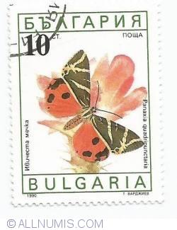 Imaginea #1 a 10 stotinki - Panaxia quadripunctaria