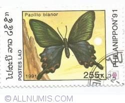 Image #1 of 255 kip - Papilio bianor
