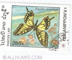 Image #1 of 285 kip - Papilio machaon