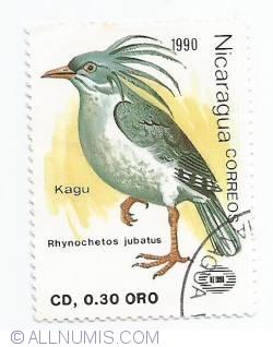 Image #1 of 0,30 Cordoba - Rhynochetos jubatus