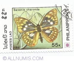 Image #1 of 55 kip - Sasakia charonda