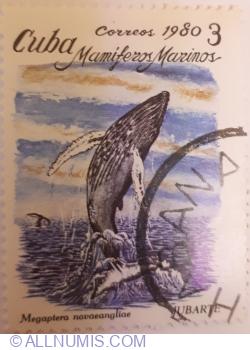 """Image #1 of 3 Correos 1980 - Megaptera novaeangliae """"Jubarte"""""""