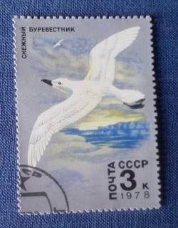 Image #1 of 3 Kopeks 1978 - PASARI