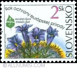 Image #1 of 2 Sk 1995 - Ciminalis clusii