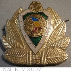 Image #1 of Helmet emblem - Customs Service