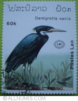 Image #1 of 60 Kip 1990 - Demigretta sacra