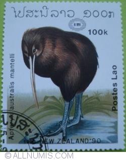 Image #1 of 100 Kip 1990 - Apteryx australis mantelli