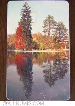 Image #1 of Autumn