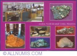Image #1 of Mine Flowers Museum - Interior, Exhibits