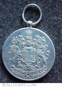 Imaginea #2 a Medalia voluntarilor 1939-1945