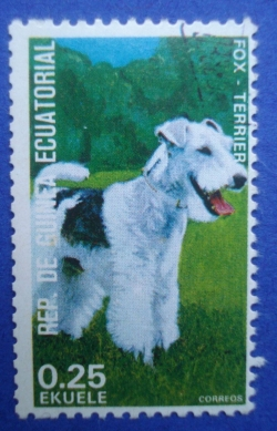 Image #1 of 0.25 Ekuele - Fox Terrier