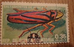 Image #1 of 0.35 Ekuele - Saltamontes de Africa Occidental